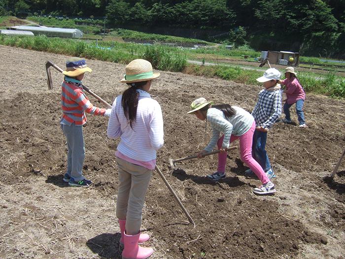 鹿児島のシュタイナー学校|NPO法人 どんぐり自然学校